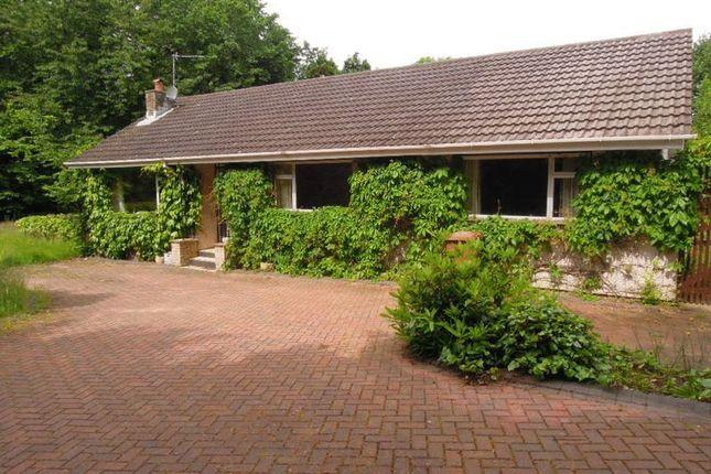 Thumbnail Detached bungalow for sale in Rhen Cullen, Kirk Michael