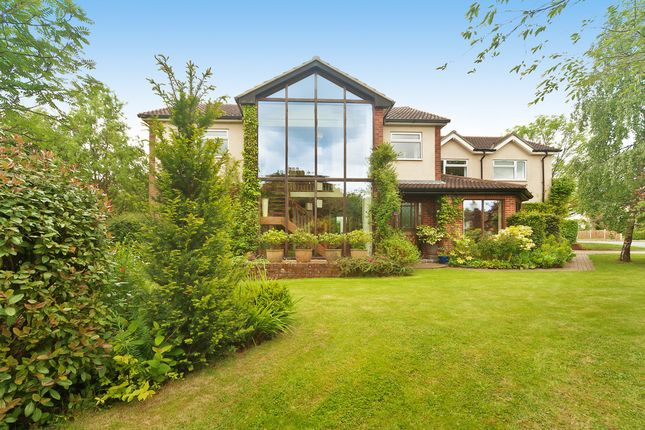 Thumbnail Detached house for sale in Mount Bures, Hall Road, Colchester