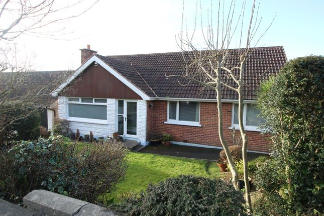 Thumbnail Bungalow for sale in Dellmount Avenue, Bangor