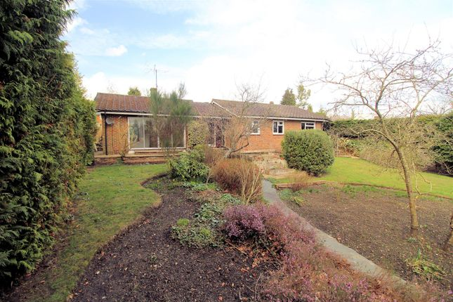 Thumbnail Detached bungalow for sale in Hook Hill Lane, Hook Heath, Woking