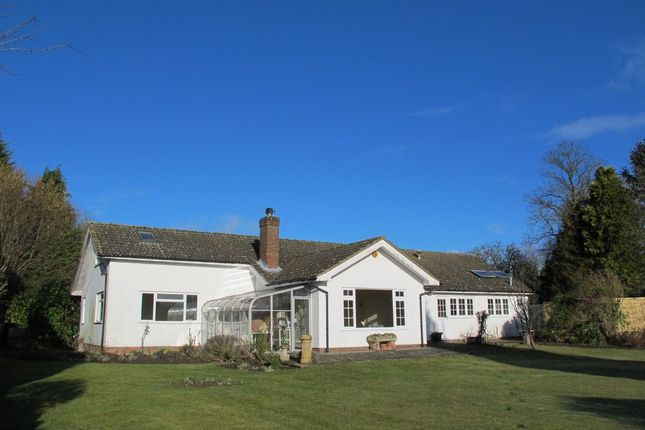 Thumbnail Detached bungalow to rent in Stone, Aylesbury