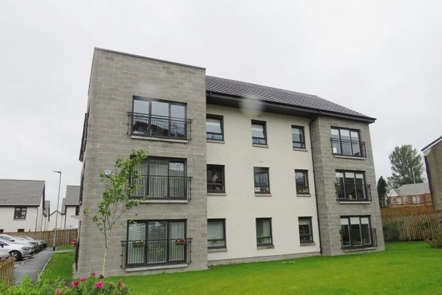 Thumbnail Flat to rent in Paragon Drive, Motherwell