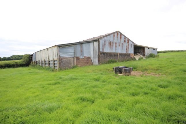Barn conversion for sale in Broadwoodkelly, Winkleigh