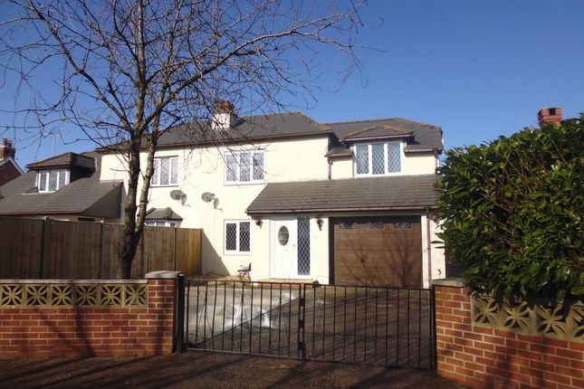 Thumbnail Semi-detached house to rent in Cheriton Bishop, Exeter