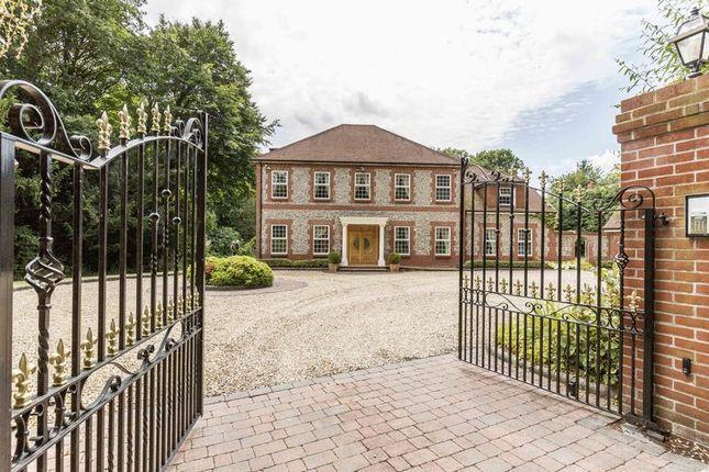 Thumbnail Detached house for sale in Letton Park, Blandford Forum