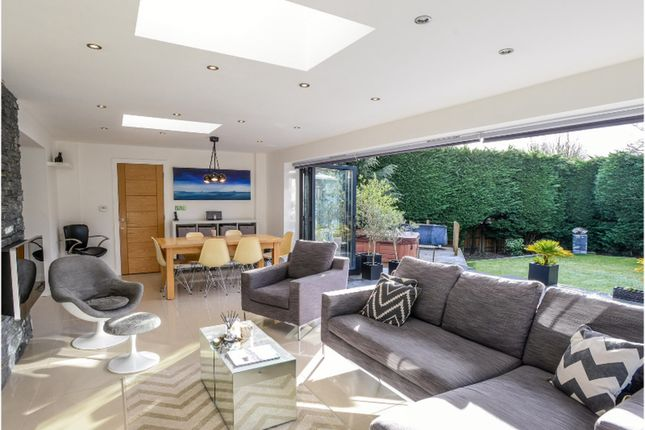 Thumbnail Detached house for sale in High Green, Norwich