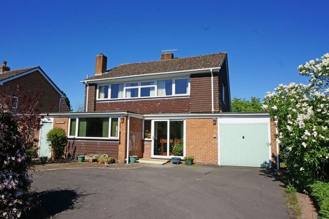 Thumbnail Detached house for sale in The Green, Pitminster, Taunton