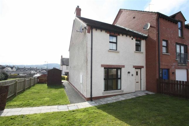 Thumbnail Semi-detached house to rent in Drummond Park, Drumaness, Ballynahinch
