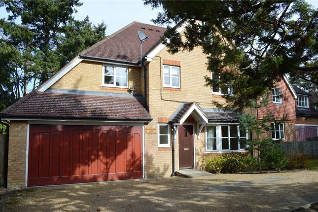 Thumbnail Detached house to rent in Lytton Road, Woking