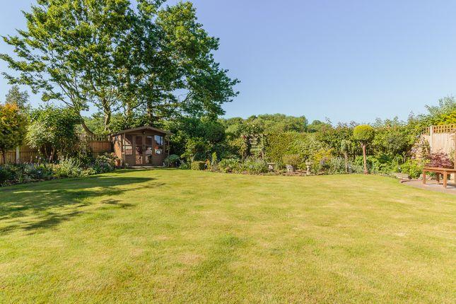 Thumbnail Detached house for sale in The Gardens, Doddinghurst, Brentwood