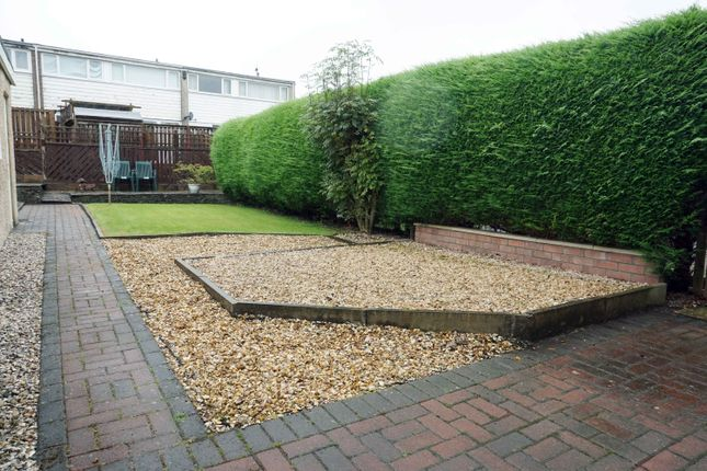Rear Gardens of Dunedin Drive, Hairmyres, East Kilbride G75