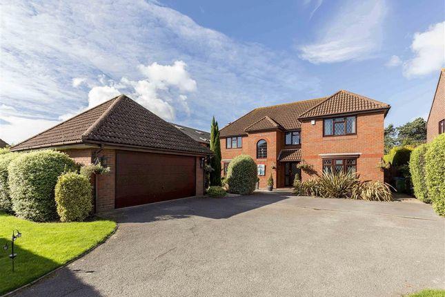 Thumbnail Detached house to rent in Stroud Green Lane, Fareham