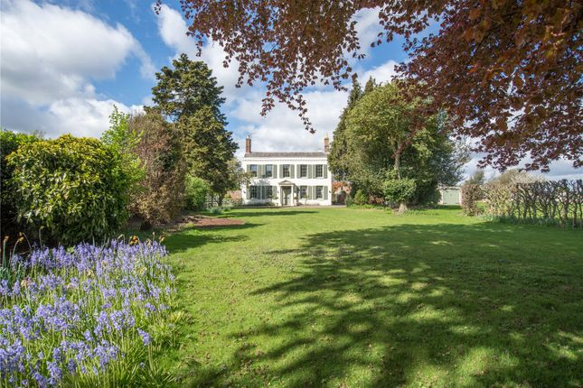 Thumbnail Detached house for sale in Canterbury Road, Wingham, Canterbury, Kent
