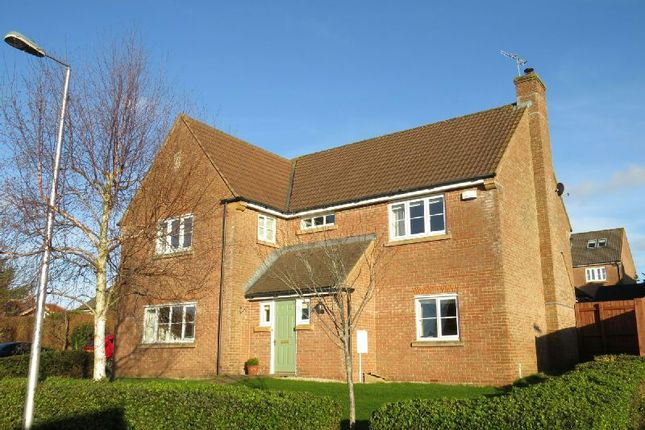 Thumbnail Detached house for sale in Observatory Field, Winscombe