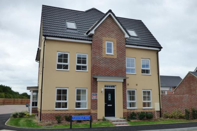 Thumbnail Semi-detached house to rent in Foxwhelp Way, Quedgeley, Gloucester
