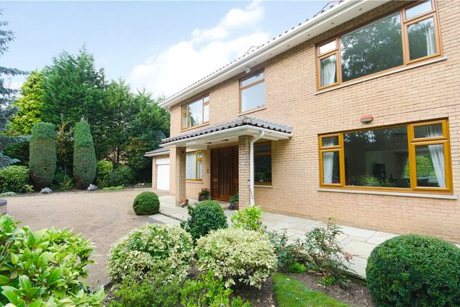Thumbnail Detached house to rent in Coombe Ridings, Coombe, Kingston Upon Thames