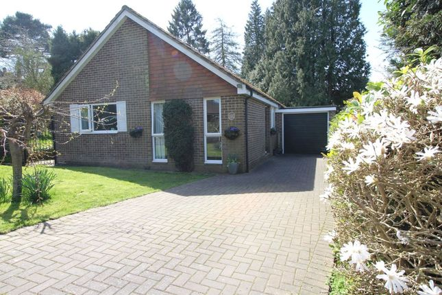 Thumbnail Bungalow for sale in Fairview Lane, Crowborough