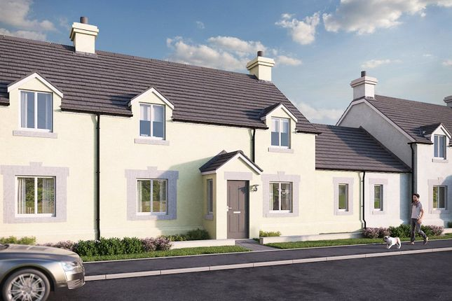 Thumbnail Terraced house for sale in Plot No 19, Triplestone Close, Herbrandston, Milford Haven