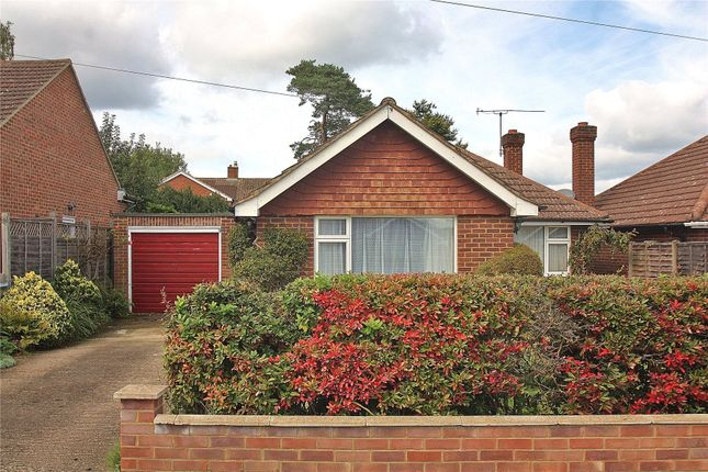 3 bed detached bungalow for sale in Bisley, Woking, Surrey