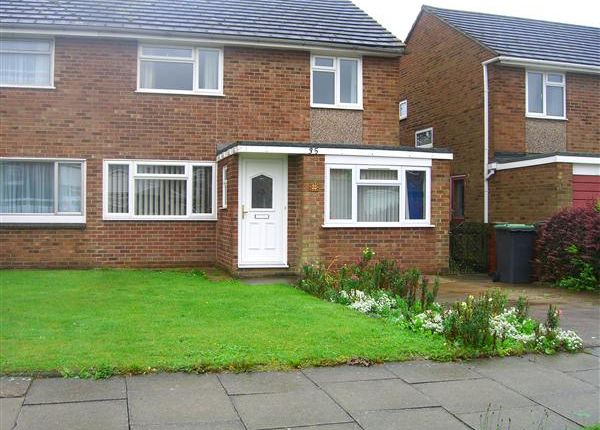 Thumbnail Semi-detached house to rent in Brockenhurst Close, Canterbury