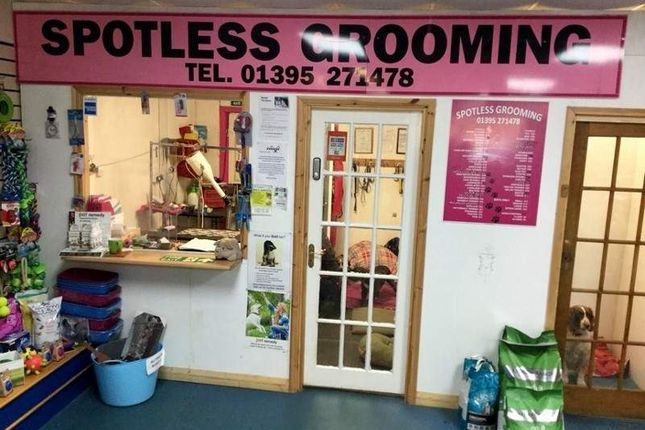 Retail premises for sale in Sublet Of 15 Middle Unit, Exmouth