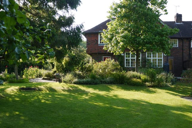 Rear Garden of Ridge Common Lane, Steep, Petersfield GU32
