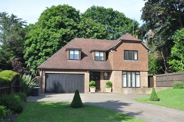 Thumbnail Detached house for sale in Park Lane, Ashtead