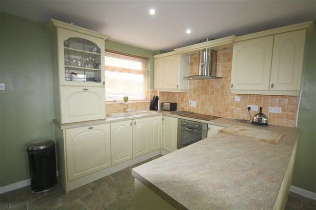 Thumbnail Terraced house to rent in Gainford, Chester Le Street, County Durham