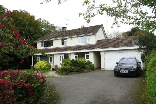 Thumbnail Detached house to rent in Church Road, Winscombe