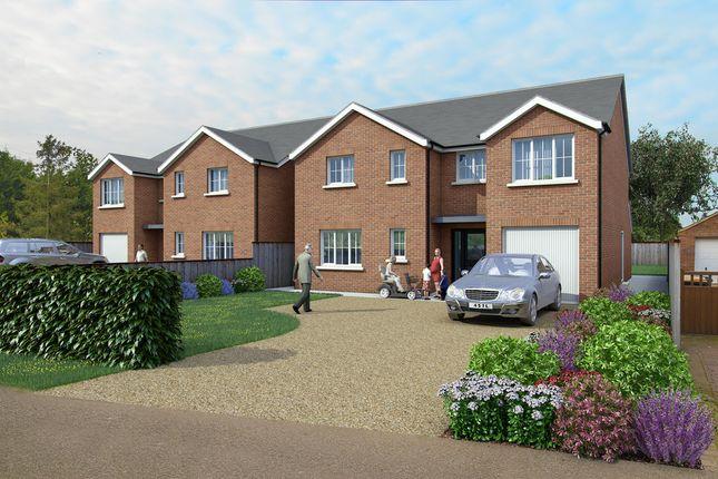 Thumbnail Detached house for sale in Plot 2 Dane Lane, Wilstead