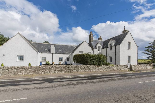 Thumbnail Commercial property for sale in Killimster, Near Wick, Caithness