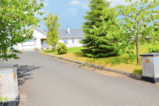 Thumbnail Detached house for sale in Largy Road, Ahoghill, Ballymena, County Antrim