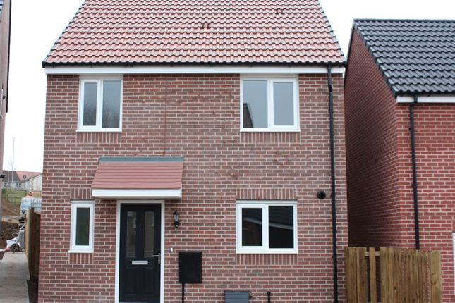 "3 bedroom detached house for sale in ""The Iris"" at Wyndham Way, Pleasley, Mansfield"