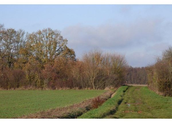Land for sale in 45000, Orléans, Fr