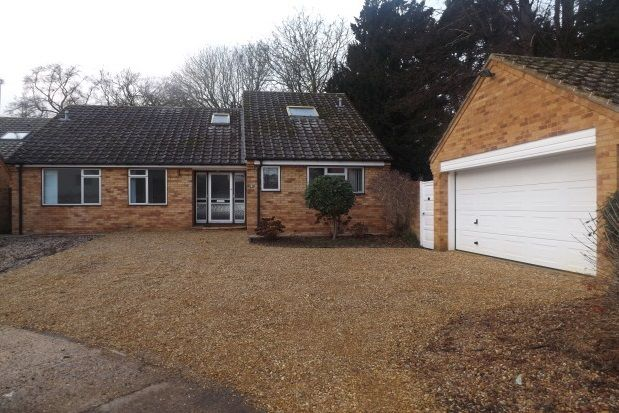 Thumbnail Bungalow to rent in Selwyn Close, Great Shelford, Cambridge
