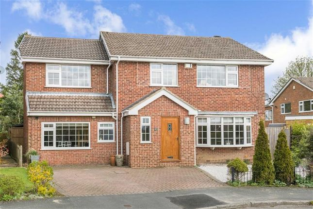 Thumbnail Detached house for sale in Mallinson Oval, Harrogate, North Yorkshire