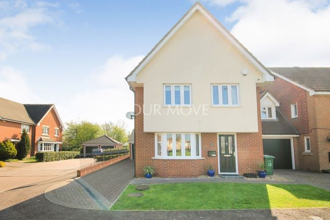 Thumbnail Detached house for sale in Harris Close, Romford
