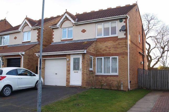 Thumbnail Detached house for sale in Silverdale Road, Cramlington