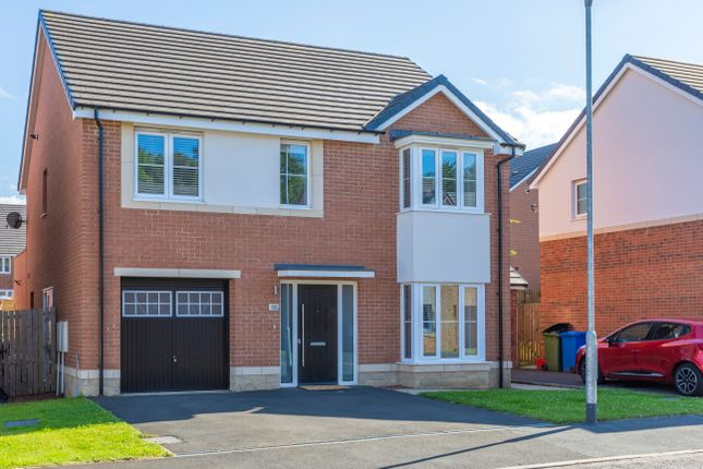 Thumbnail Detached house for sale in Strother Way, Cramlington