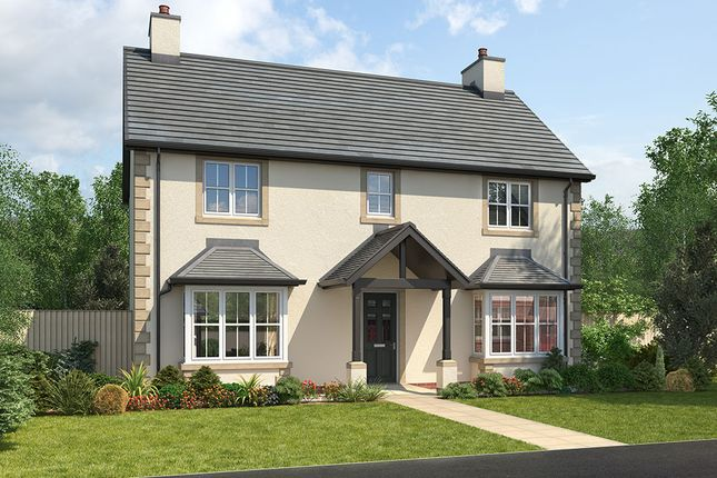 "Thumbnail Detached house for sale in ""Arundel"" at Wilson Howe, Whitehaven"