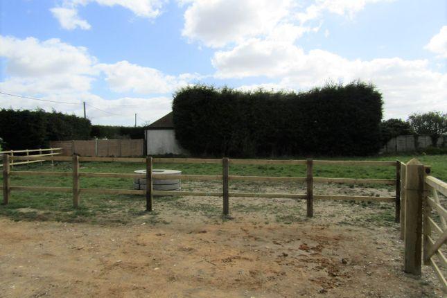 Thumbnail Land to rent in Frinton Road, Thorpe-Le-Soken, Clacton-On-Sea, Essex