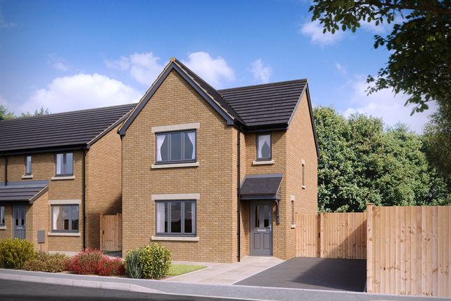 """Thumbnail Detached house for sale in """"The Hatfield """" at Warminster Road, Frome"""