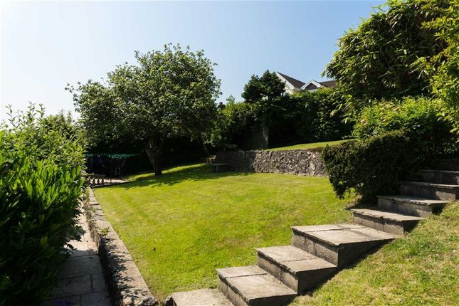 Homes For Sale The Mumbles