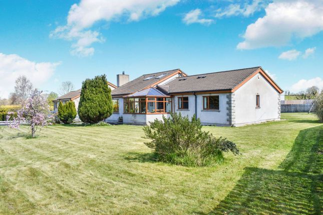 Thumbnail Detached bungalow for sale in Plantation Road, Portadown