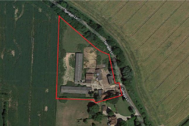 Thumbnail Land for sale in Spriggs Lane, Blackmore, Ingatestone
