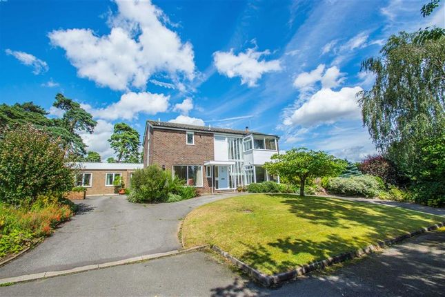 Thumbnail Detached house for sale in Mayflower Close, Hertingfordbury, Herts