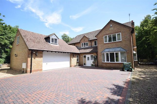 Thumbnail Detached house for sale in Overstone Lane, Overstone, Northampton