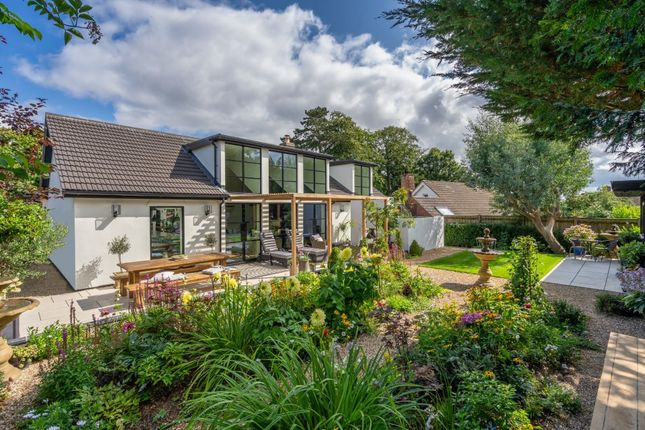Thumbnail Detached house for sale in Telegraph Lane East, Norwich