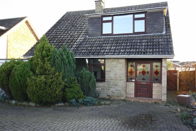 Thumbnail Detached house to rent in Eppleworth Road, Cottingham