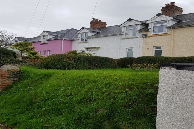 3 bed semi-detached bungalow to rent in Jury Lane, Haverfordwest SA61